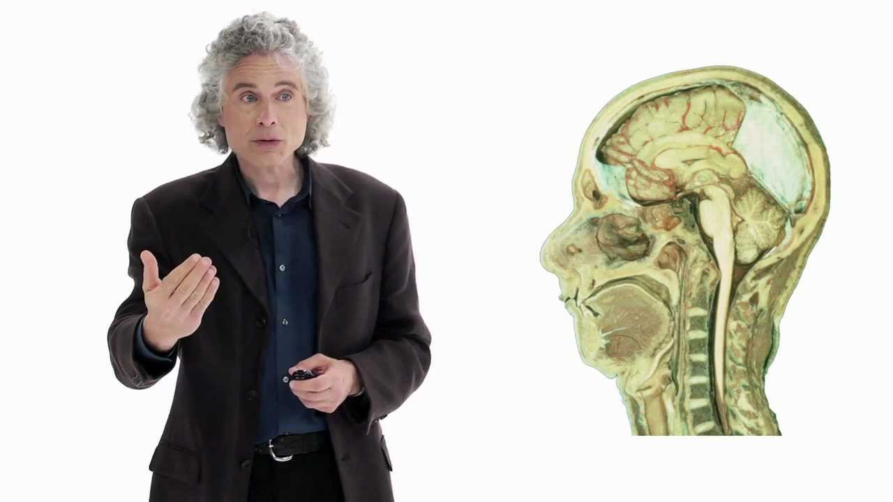 как наш мозг запоминает новые слова