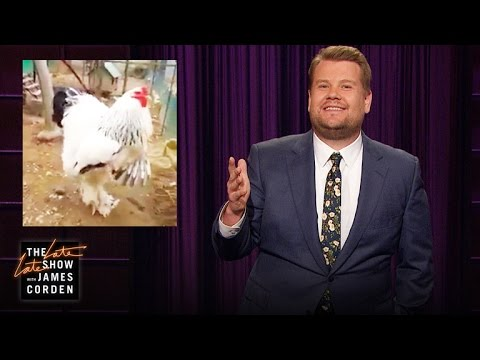 james corden y el pollote