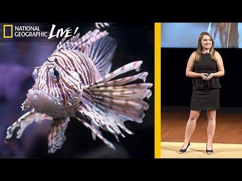 national geographic y los peces león