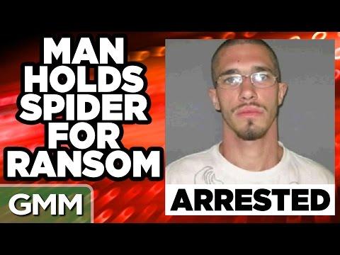cosas curiosas arrestos